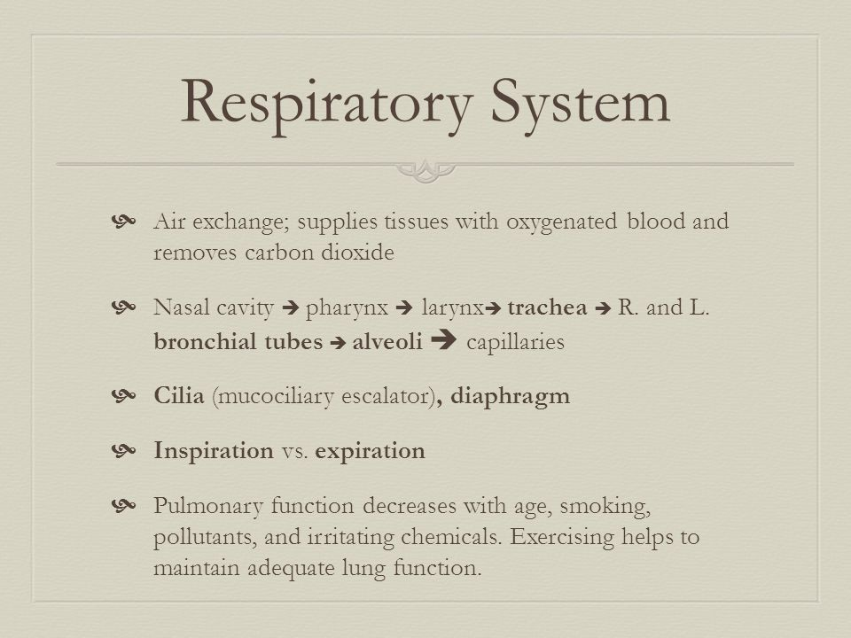 Respiratory System  Air exchange; supplies tissues with oxygenated blood and removes carbon dioxide  Nasal cavity  pharynx  larynx  trachea  R.