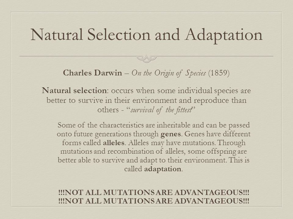 Natural Selection and Adaptation Charles Darwin – On the Origin of Species (1859) Natural selection: occurs when some individual species are better to