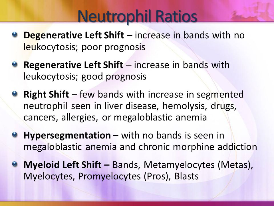 Neutrophil Ratios Degenerative Left Shift – increase in bands with no leukocytosis; poor prognosis Regenerative Left Shift – increase in bands with leukocytosis; good prognosis Right Shift – few bands with increase in segmented neutrophil seen in liver disease, hemolysis, drugs, cancers, allergies, or megaloblastic anemia Hypersegmentation – with no bands is seen in megaloblastic anemia and chronic morphine addiction Myeloid Left Shift – Bands, Metamyelocytes (Metas), Myelocytes, Promyelocytes (Pros), Blasts