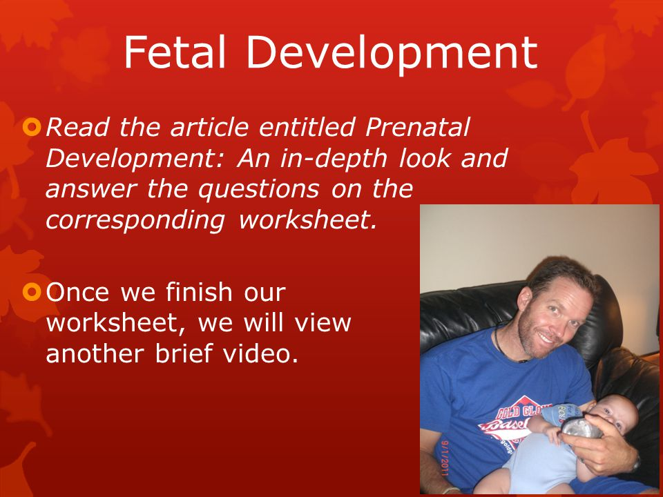Fetal Development  Read the article entitled Prenatal Development: An in-depth look and answer the questions on the corresponding worksheet.
