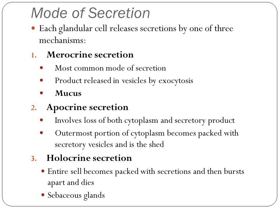 Mode of Secretion Each glandular cell releases secretions by one of three mechanisms: 1. Merocrine secretion Most common mode of secretion Product rel