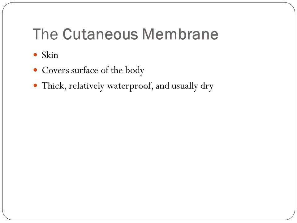 The Cutaneous Membrane Skin Covers surface of the body Thick, relatively waterproof, and usually dry