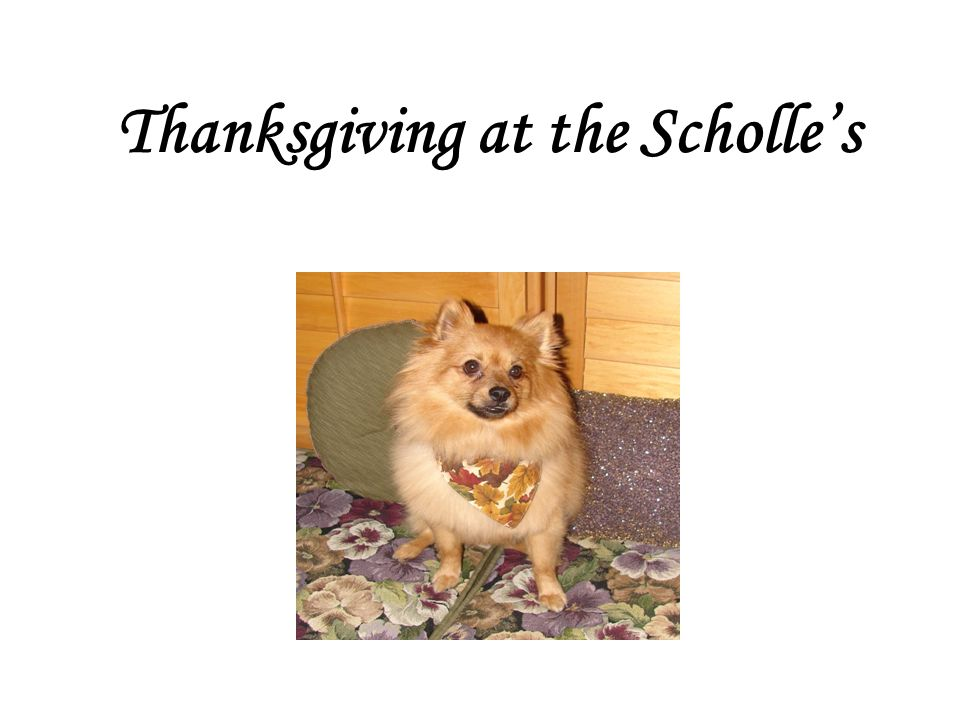 Thanksgiving at the Scholle's