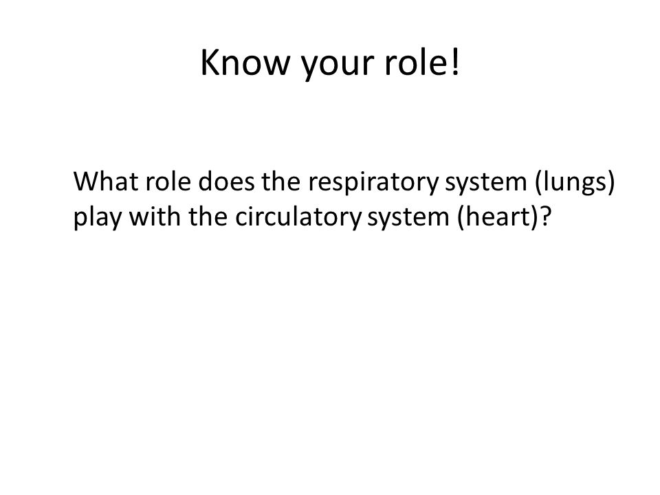 Know your role! What role does the respiratory system (lungs) play with the circulatory system (heart)?