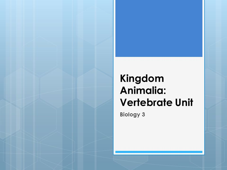 Kingdom Animalia: Vertebrate Unit Biology 3