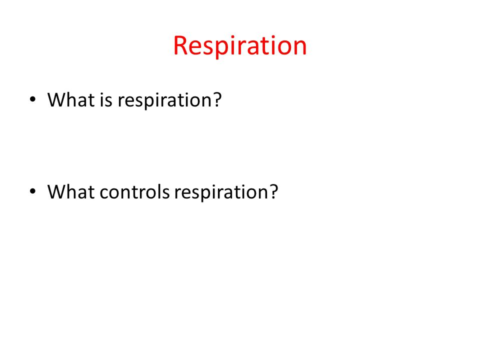 Respiration What is respiration? What controls respiration?