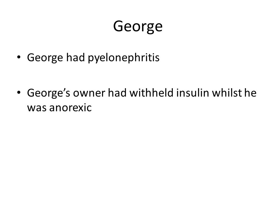 George George had pyelonephritis George's owner had withheld insulin whilst he was anorexic