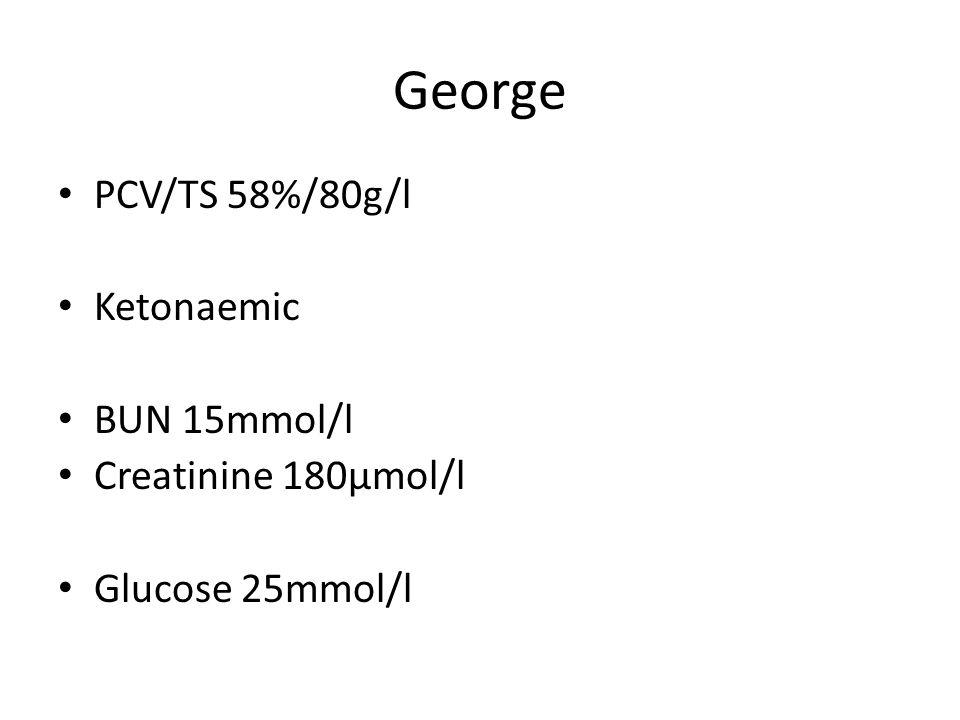 George PCV/TS 58%/80g/l Ketonaemic BUN 15mmol/l Creatinine 180µmol/l Glucose 25mmol/l