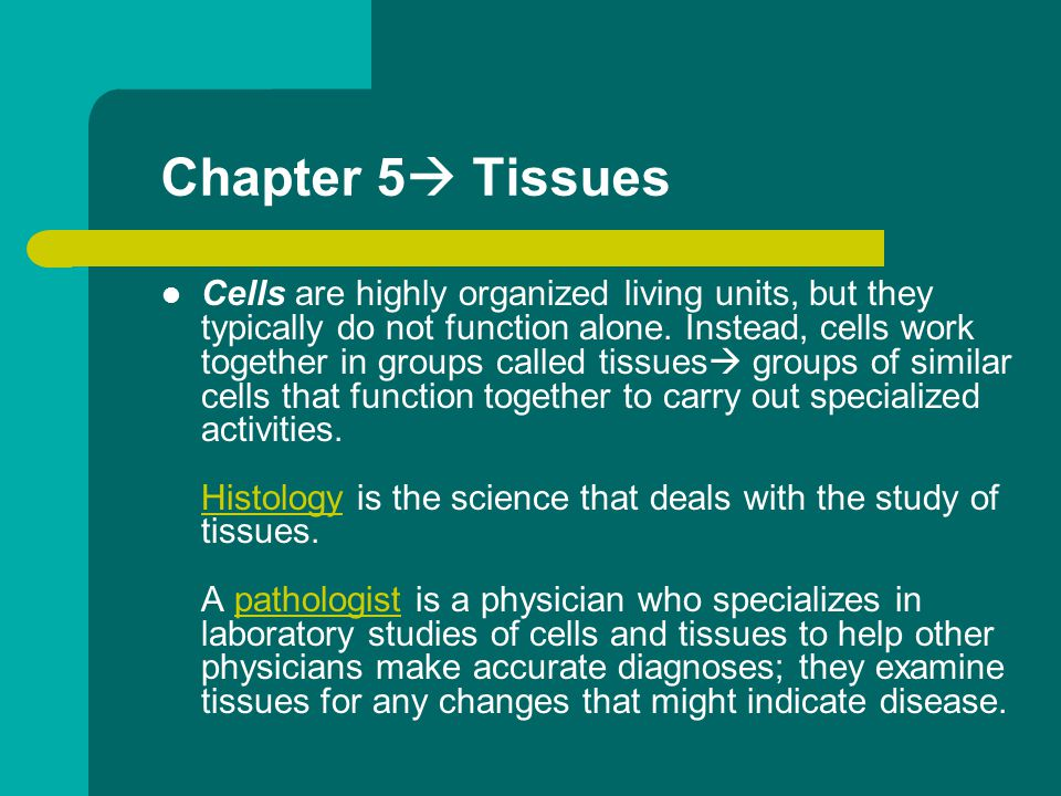 Cells are highly organized living units, but they typically do not function alone. Instead, cells work together in groups called tissues  groups of s