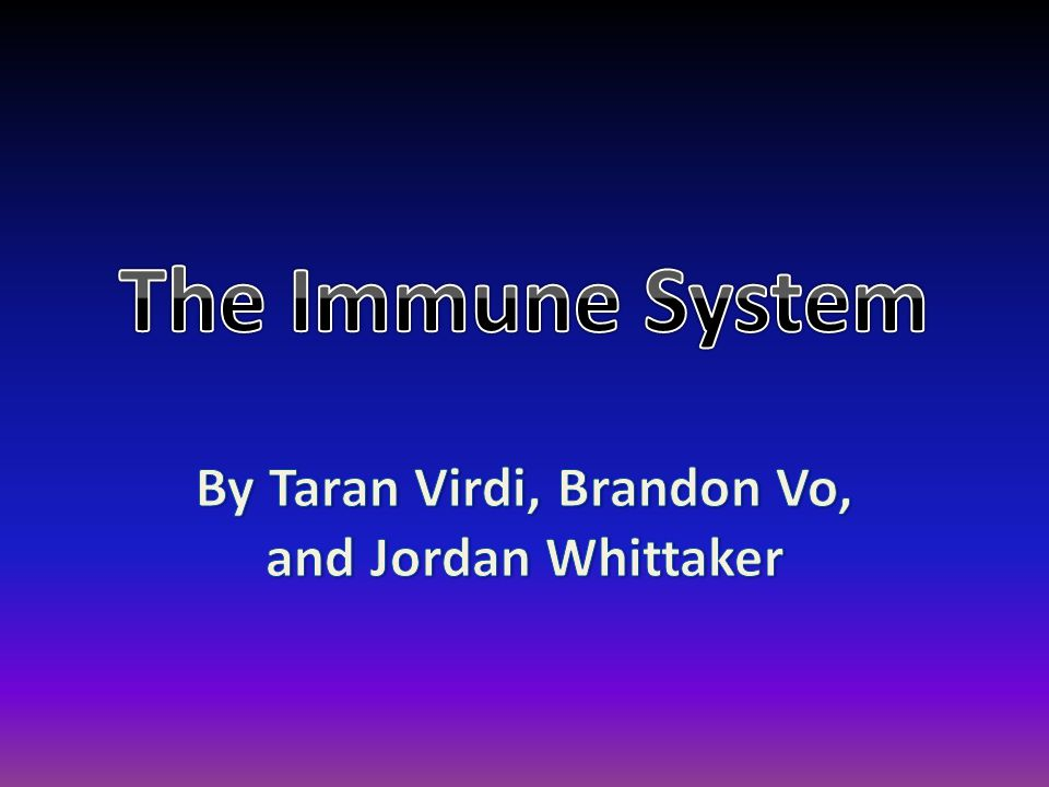What is the Immune System.
