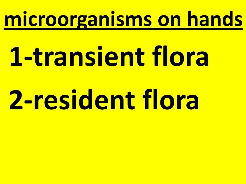 microorganisms on hands 1-transient flora 2-resident flora