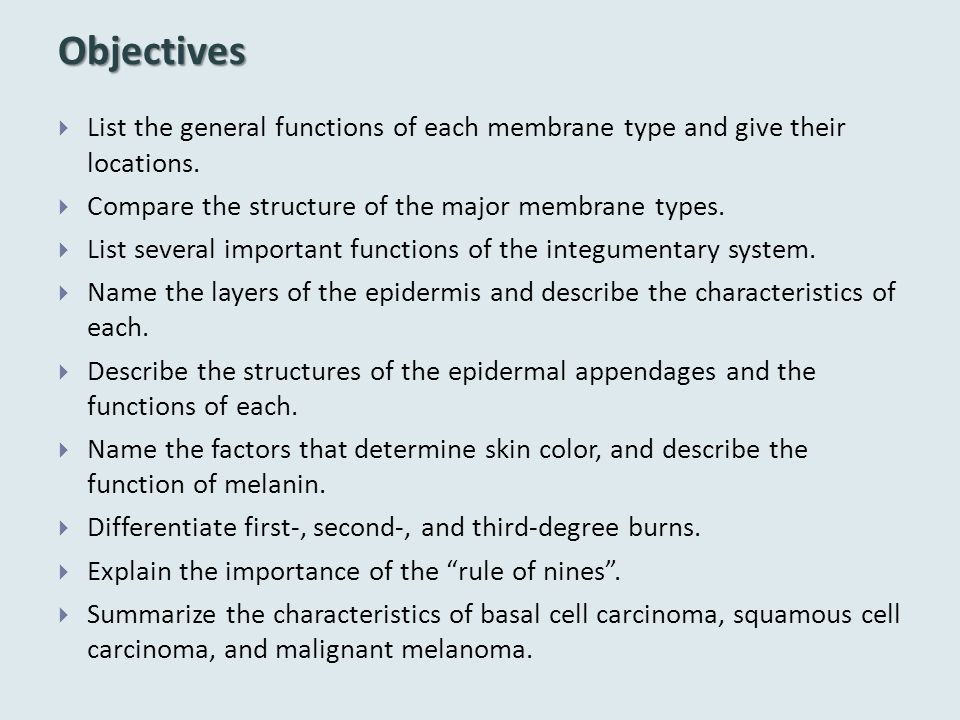Objectives  List the general functions of each membrane type and give their locations.  Compare the structure of the major membrane types.  List se