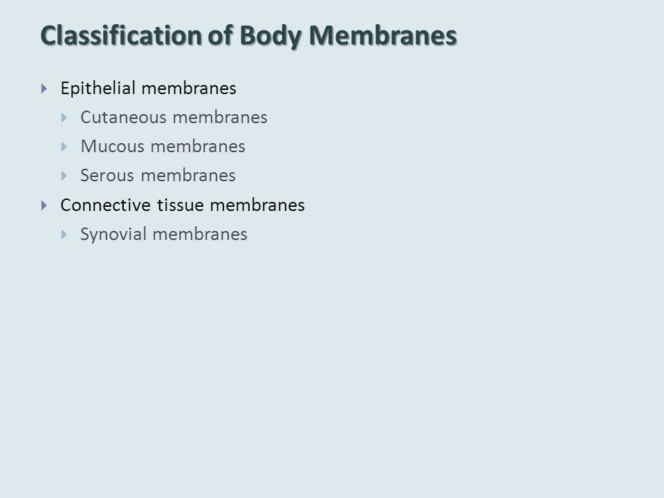 Classification of Body Membranes  Epithelial membranes  Cutaneous membranes  Mucous membranes  Serous membranes  Connective tissue membranes  Sy