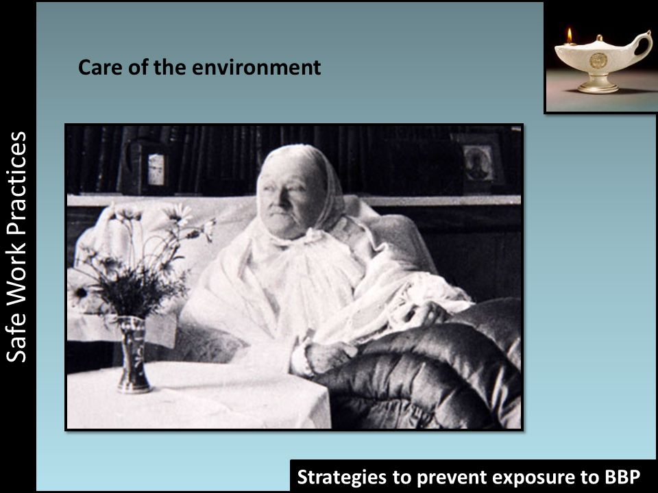Work associated risks Safe Work Practices Strategies to prevent exposure to BBP Care of the environment