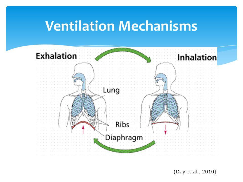 Ventilation Mechanisms (Day et al., 2010)