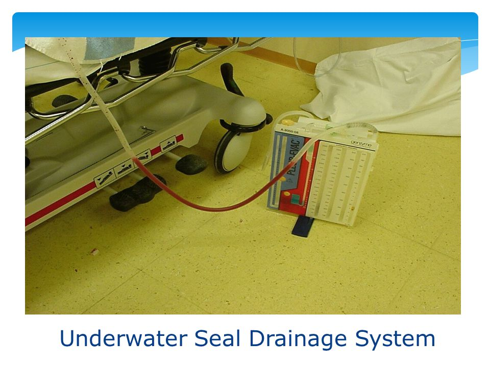 Underwater Seal Drainage System