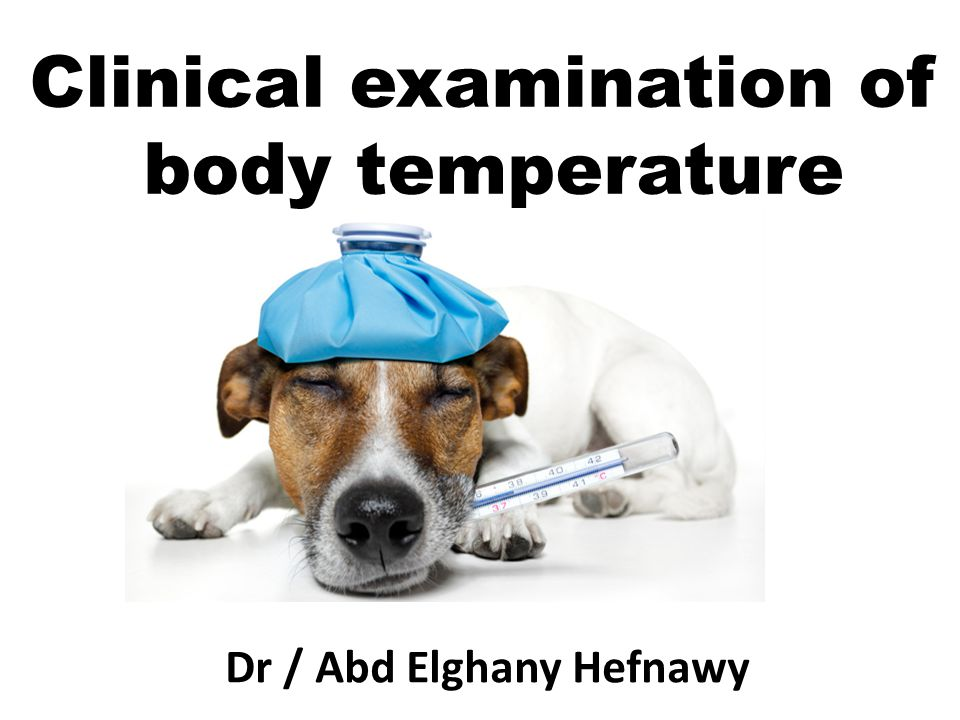 1- Physiological aspect on the body temperature 2-Internal body temperature 3-Clinical significance of taking of body temperature Points of studying