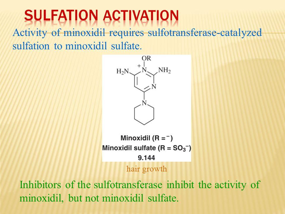 Activity of minoxidil requires sulfotransferase-catalyzed sulfation to minoxidil sulfate. Inhibitors of the sulfotransferase inhibit the activity of m