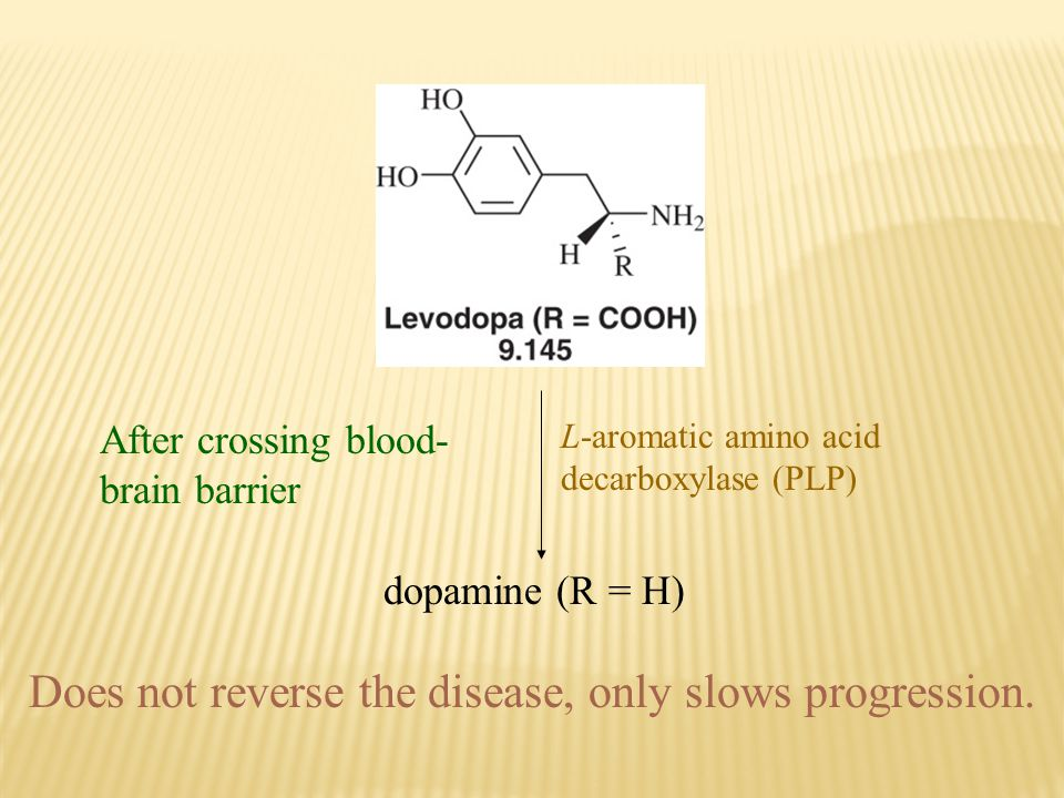 After crossing blood- brain barrier L-aromatic amino acid decarboxylase (PLP) dopamine (R = H) Does not reverse the disease, only slows progression.