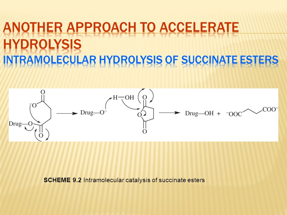 SCHEME 9.2 Intramolecular catalysis of succinate esters
