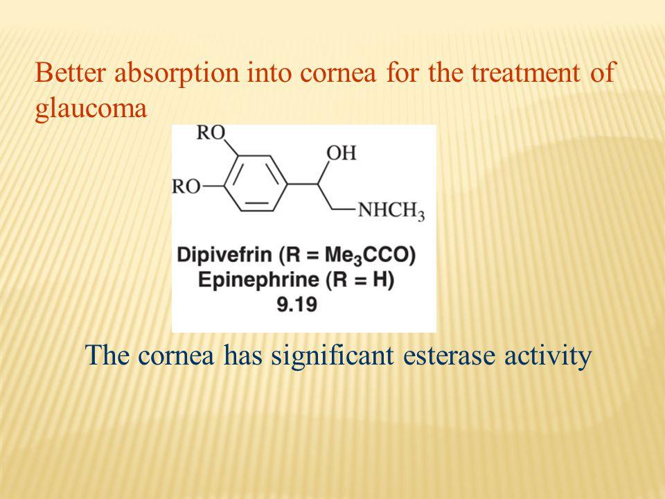Better absorption into cornea for the treatment of glaucoma The cornea has significant esterase activity