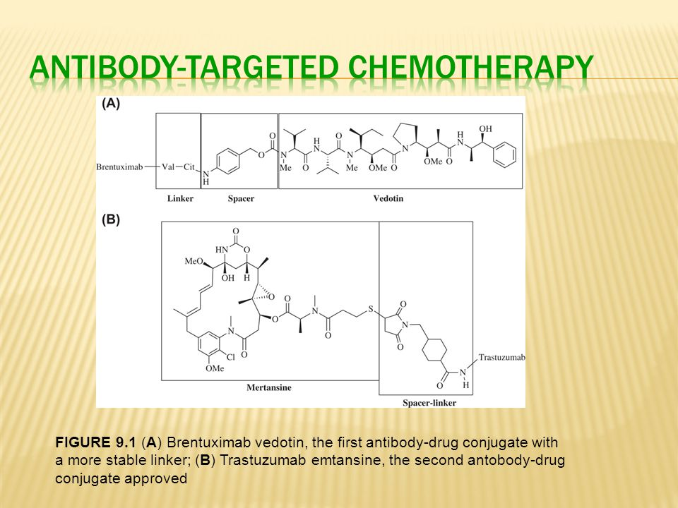 FIGURE 9.1 (A) Brentuximab vedotin, the first antibody-drug conjugate with a more stable linker; (B) Trastuzumab emtansine, the second antobody-drug c