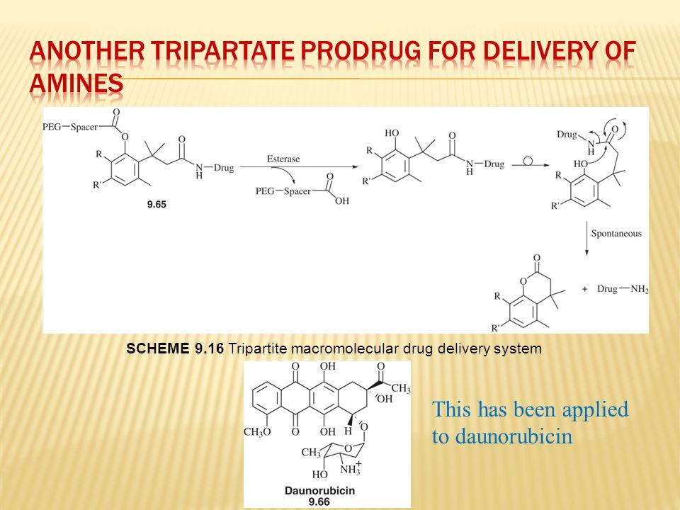 SCHEME 9.16 Tripartite macromolecular drug delivery system This has been applied to daunorubicin