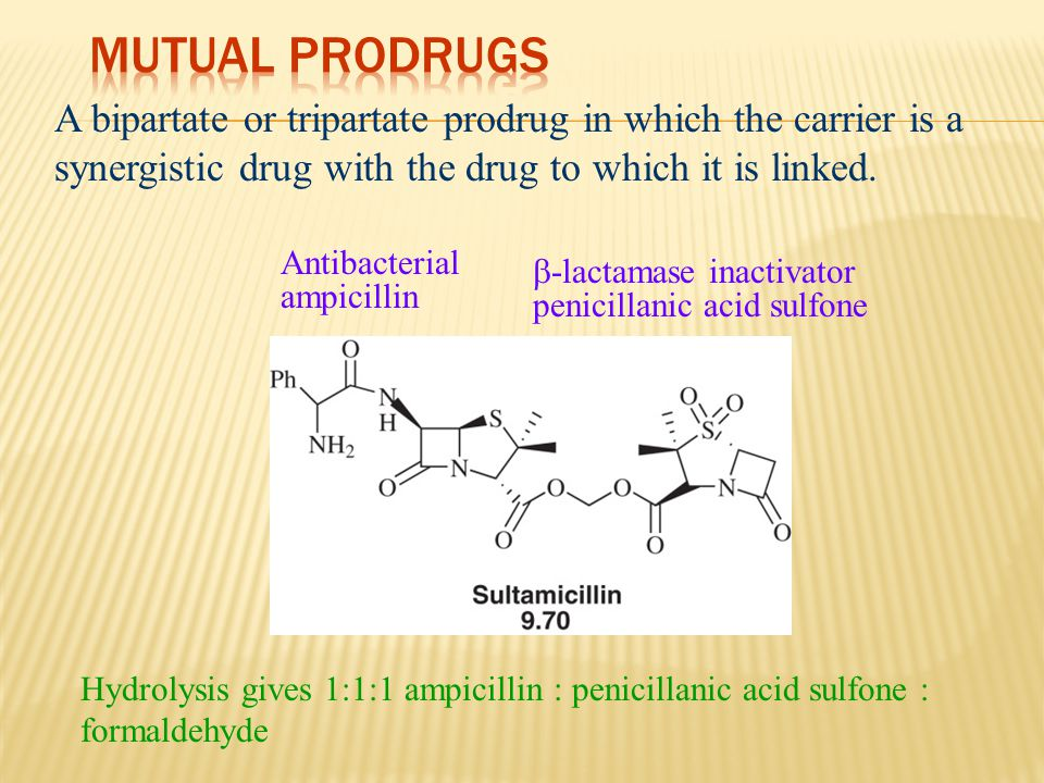 A bipartate or tripartate prodrug in which the carrier is a synergistic drug with the drug to which it is linked. Antibacterial ampicillin  -lactamas