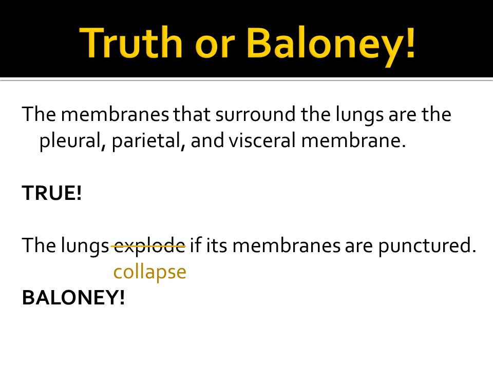 The membranes that surround the lungs are the pleural, parietal, and visceral membrane. TRUE! The lungs explode if its membranes are punctured. collap