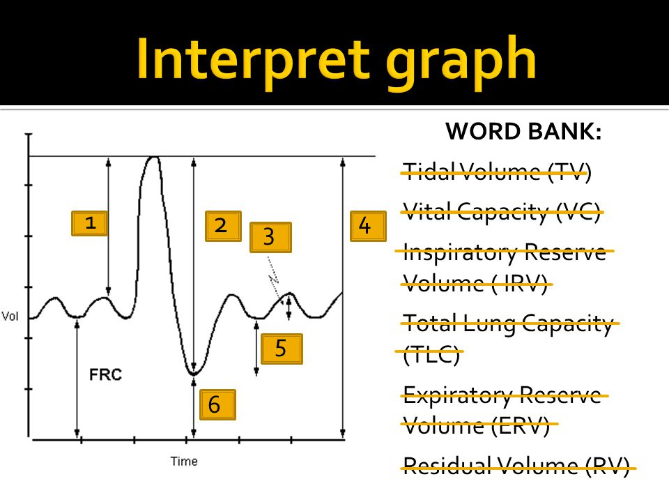 WORD BANK: Tidal Volume (TV) Vital Capacity (VC) Inspiratory Reserve Volume ( IRV) Total Lung Capacity (TLC) Expiratory Reserve Volume (ERV) Residual