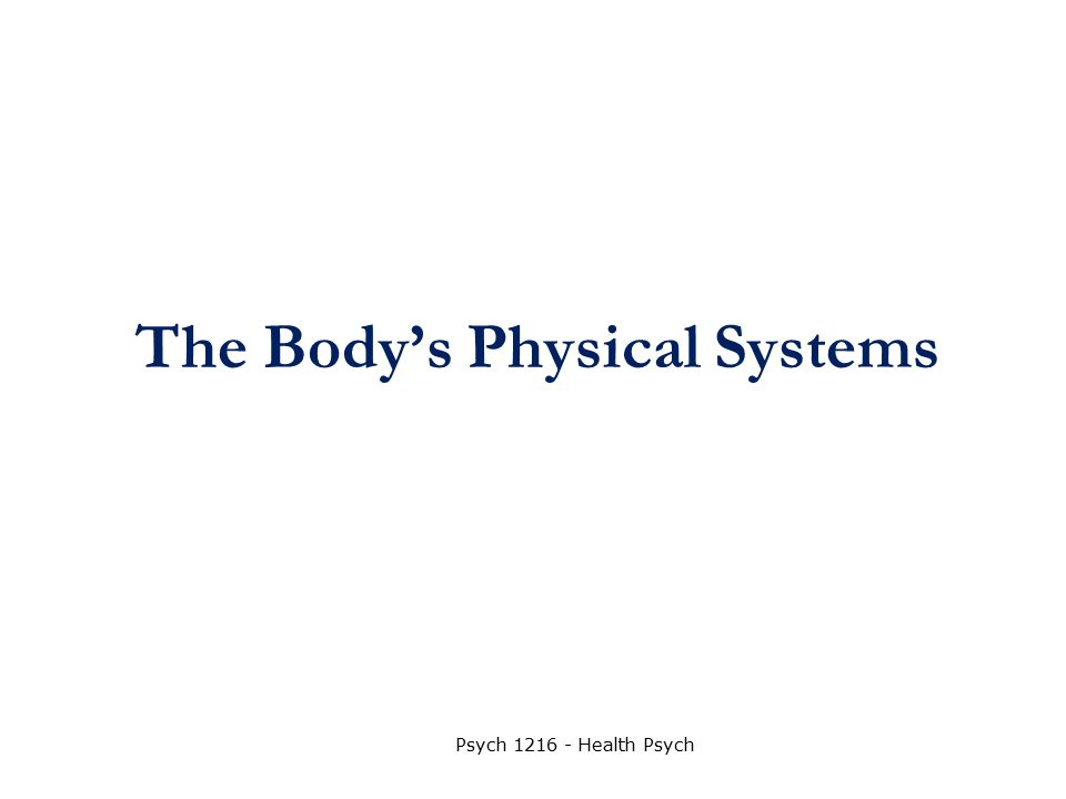 The Body's Physical Systems Psych 1216 - Health Psych