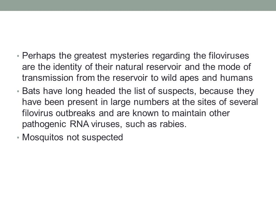 Perhaps the greatest mysteries regarding the filoviruses are the identity of their natural reservoir and the mode of transmission from the reservoir to wild apes and humans Bats have long headed the list of suspects, because they have been present in large numbers at the sites of several filovirus outbreaks and are known to maintain other pathogenic RNA viruses, such as rabies.