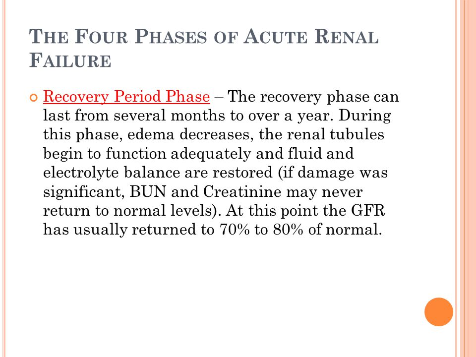 T HE F OUR P HASES OF A CUTE R ENAL F AILURE Recovery Period Phase – The recovery phase can last from several months to over a year.