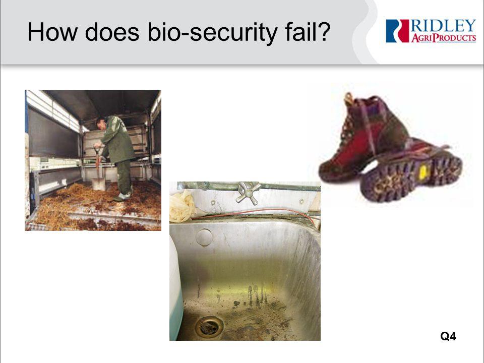 How does bio-security fail Q4