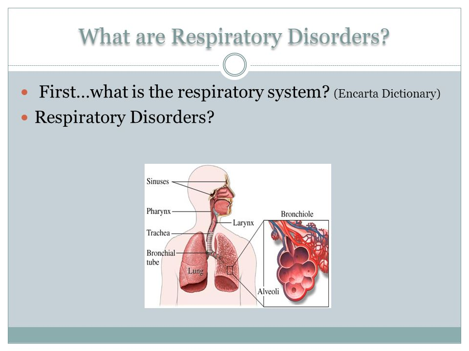 What are Respiratory Disorders. First…what is the respiratory system.