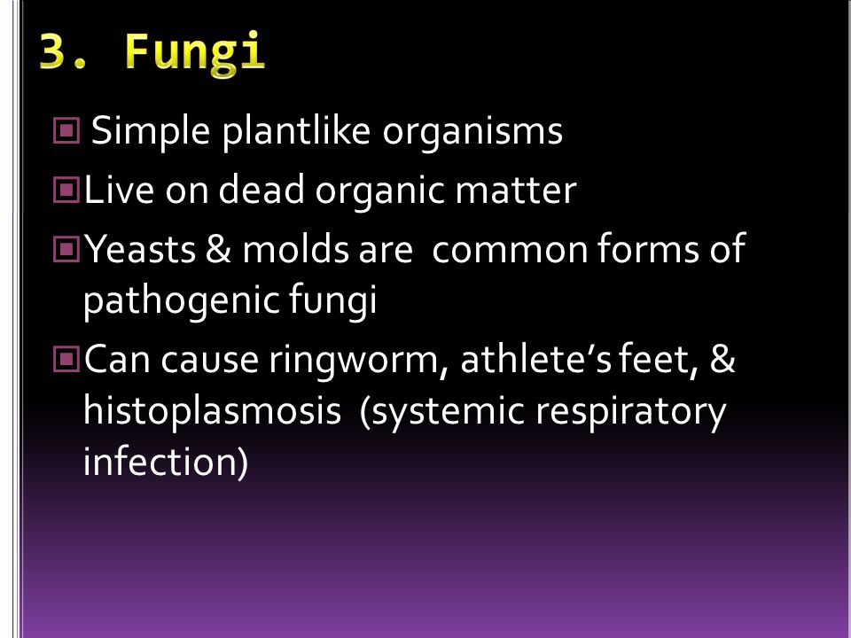 Simple plantlike organisms Live on dead organic matter Yeasts & molds are common forms of pathogenic fungi Can cause ringworm, athlete's feet, & histo