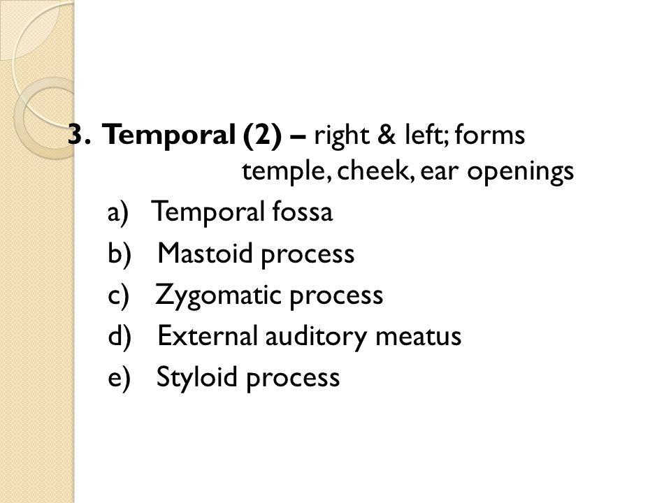 B.Vertebral Anatomy 1.Vertebral Body – transfers weight along the axis of vertebral column 2.