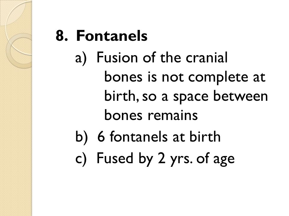 8. Fontanels a) Fusion of the cranial bones is not complete at birth, so a space between bones remains b) 6 fontanels at birth c) Fused by 2 yrs. of a
