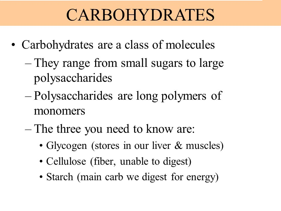 Carbohydrates are a class of molecules –They range from small sugars to large polysaccharides –Polysaccharides are long polymers of monomers –The thre