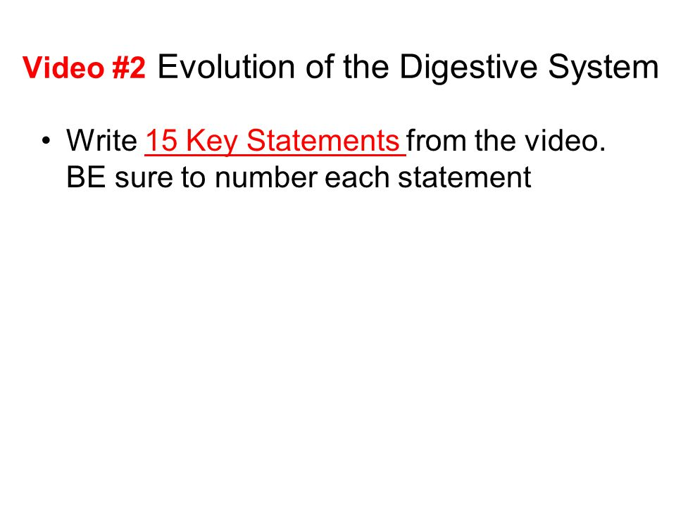 Video #2 Evolution of the Digestive System Write 15 Key Statements from the video. BE sure to number each statement