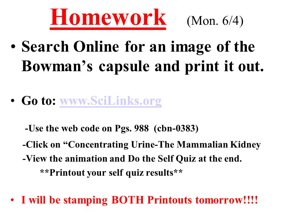 Homework (Mon. 6/4) Search Online for an image of the Bowman's capsule and print it out. Go to: www.SciLinks.orgwww.SciLinks.org -Use the web code on