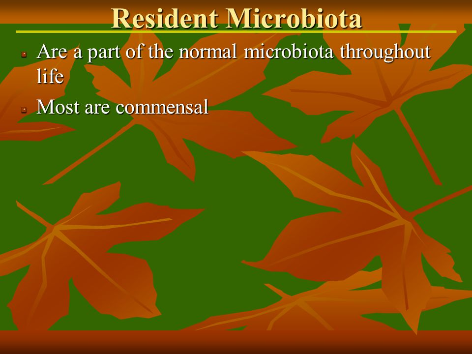 Infections acquired while in a health care facility Types of nosocomial infections Exogenous- pathogen acquired from the health care environment Endogenous- pathogen arise from normal microbiota due to factors within the health care setting Iatrogenic- results from modern medical procedures Nosocomial Infections