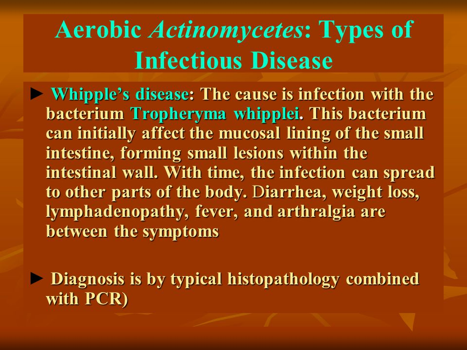Aerobic Actinomycetes: Types of Infectious Disease Whipple's disease: The cause is infection with the bacterium Tropheryma whipplei. This bacterium ca