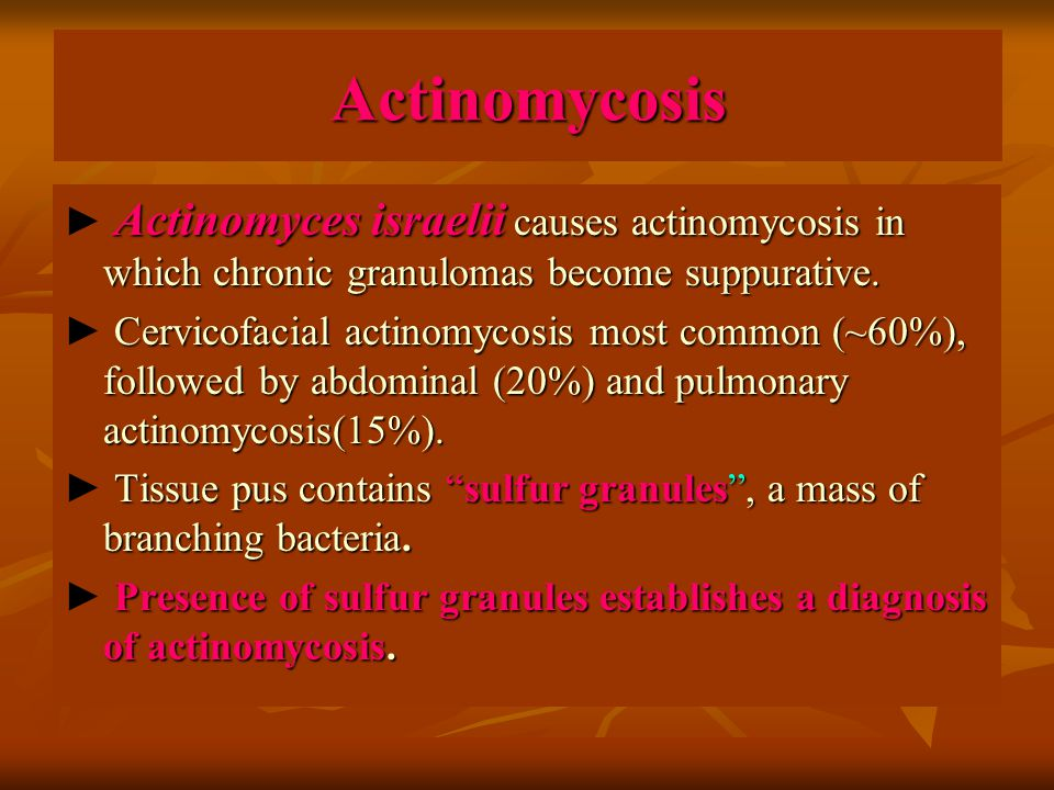 Actinomycosis Actinomyces israelii causes actinomycosis in which chronic granulomas become suppurative.
