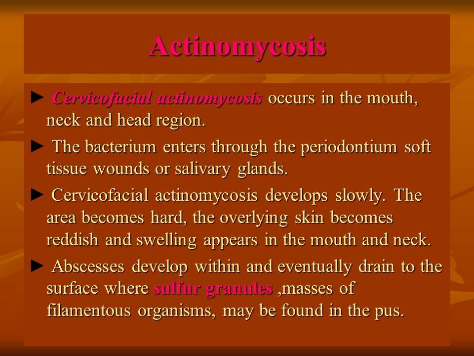 Actinomycosis Cervicofacial actinomycosis occurs in the mouth, neck and head region.
