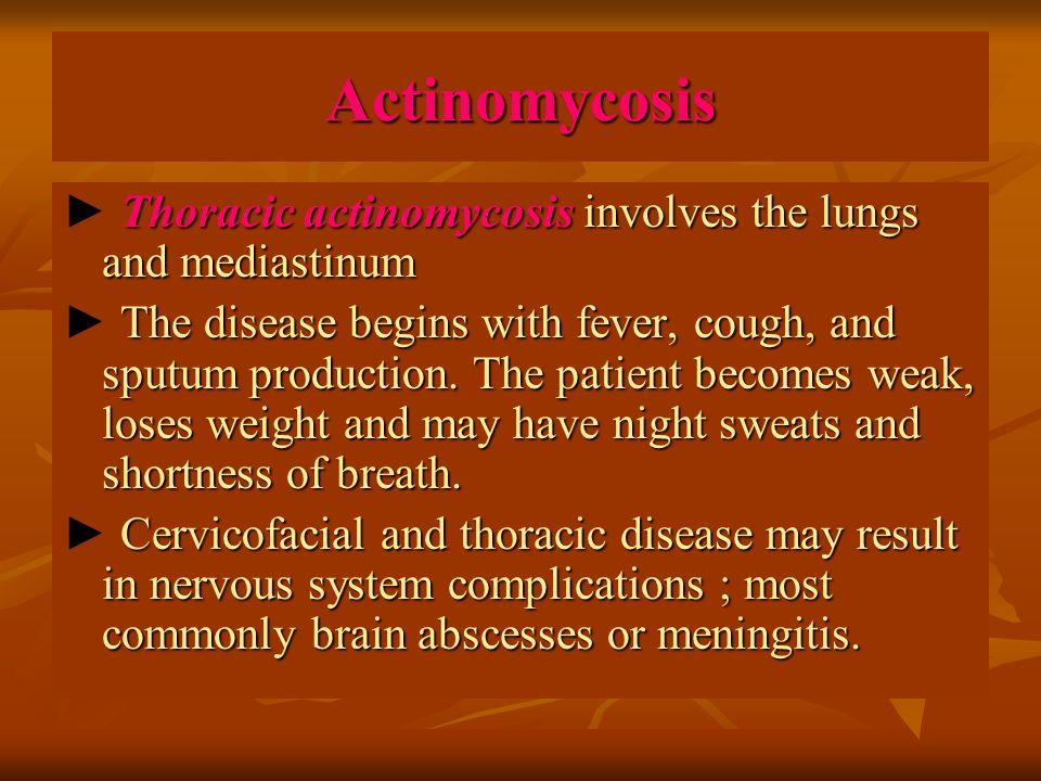 Actinomycosis Thoracic actinomycosis involves the lungs and mediastinum ► Thoracic actinomycosis involves the lungs and mediastinum The disease begins