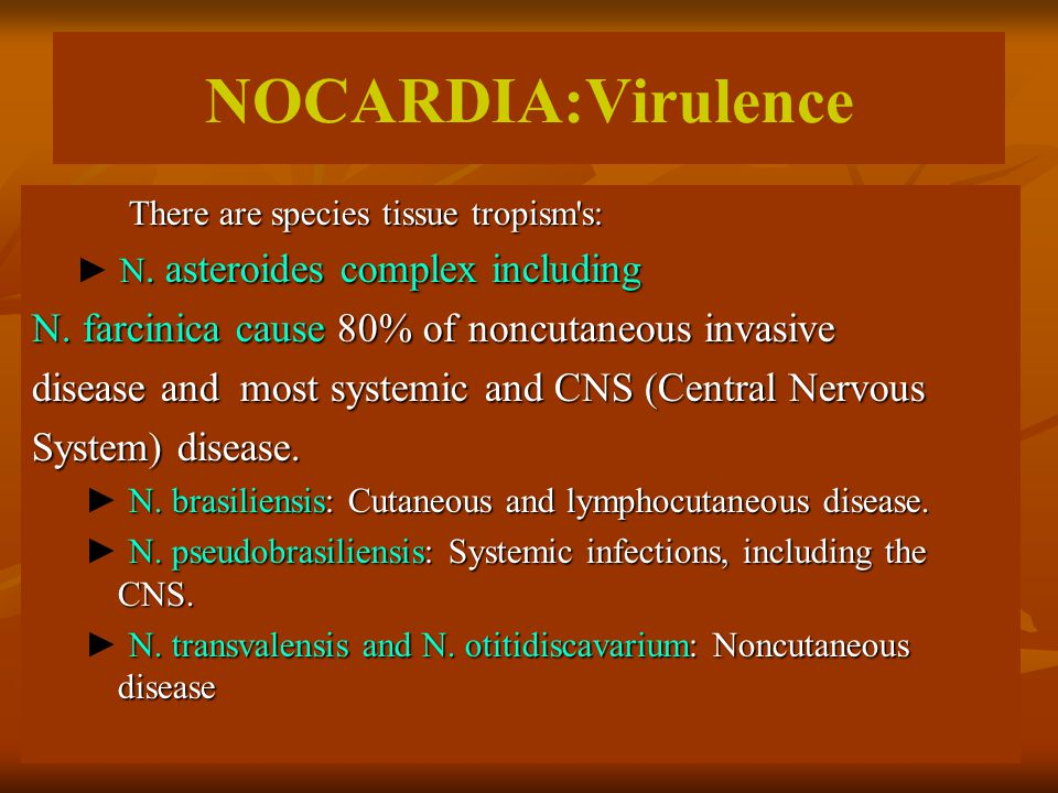 NOCARDIA:Virulence There are species tissue tropism's: There are species tissue tropism's: N. asteroides complex including ► N. asteroides complex inc