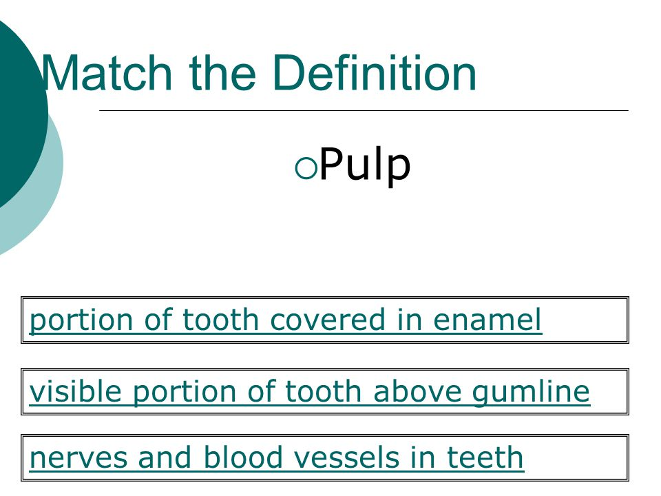 Match the Definition  Pulp visible portion of tooth above gumline nerves and blood vessels in teeth portion of tooth covered in enamel