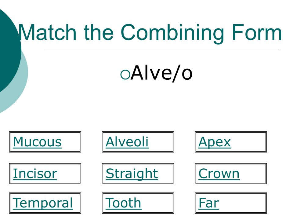 Match the Combining Form  Alve/o Straight Apex IncisorCrown FarTemporal MucousAlveoli Tooth