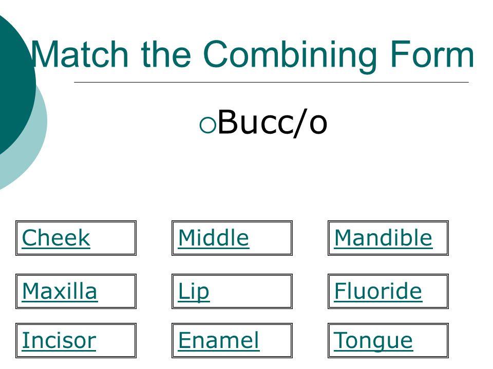 Match the Combining Form  Bucc/o Lip Mandible MaxillaFluoride TongueIncisor CheekMiddle Enamel